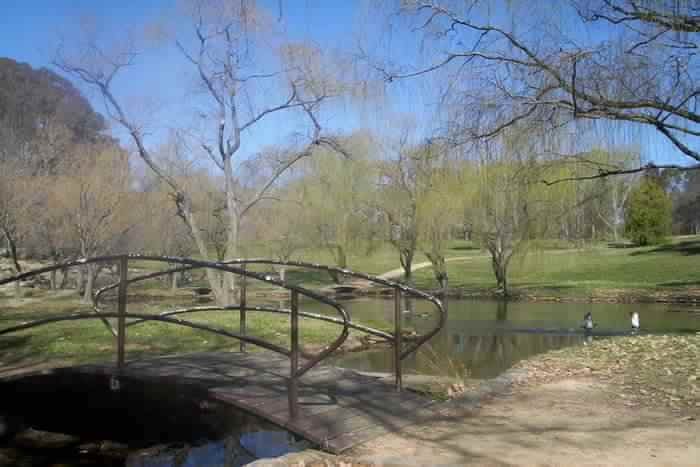Open large Park
