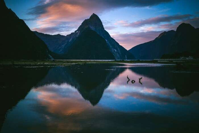 Why Visit Milford Sound, New Zealand