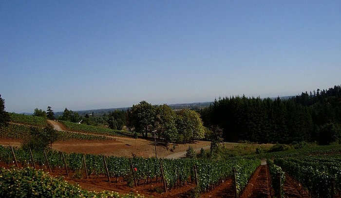 Willamette Valley Wine Country