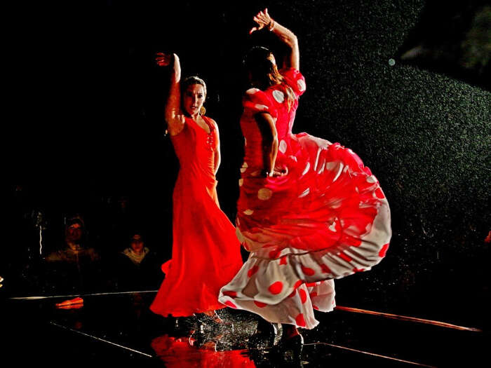 Witness Flamenco