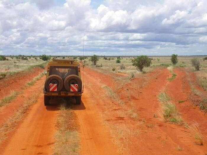 Africa Safari Jeep Kenya