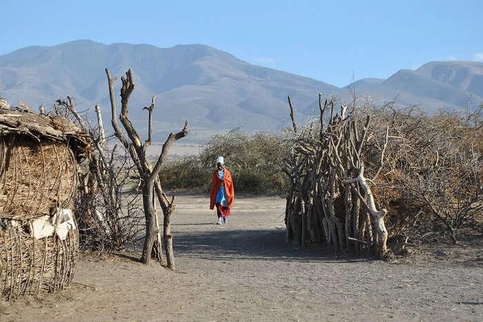 Africa Inhabitants Massai Tanzania Serengeti