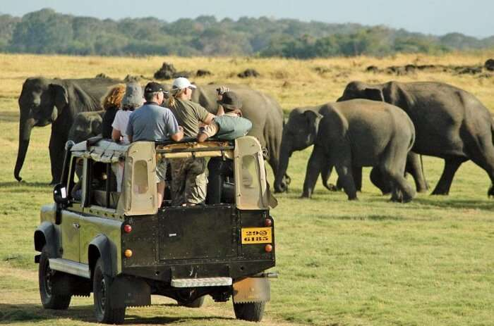 Take the Cashan Africa Tours & Safari