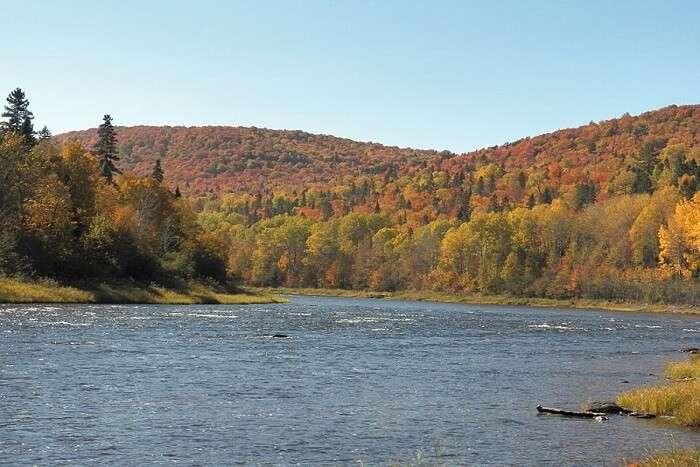 serene waterway in Maine