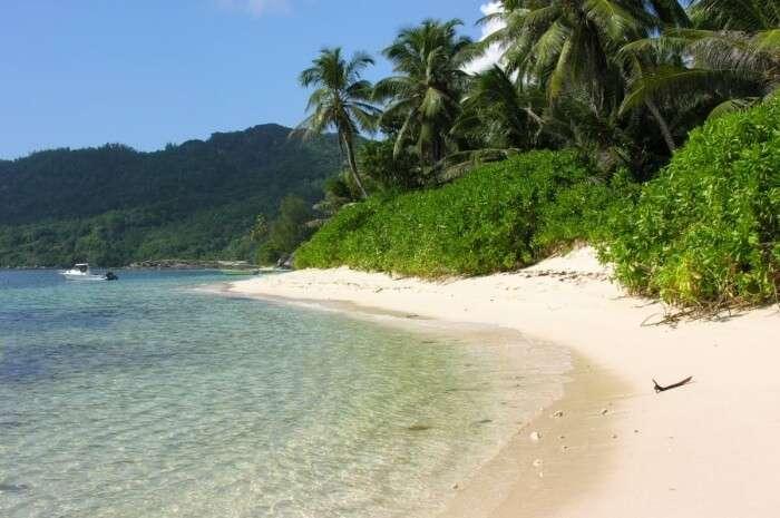 Aride Island Nature Reserve Ticket Price