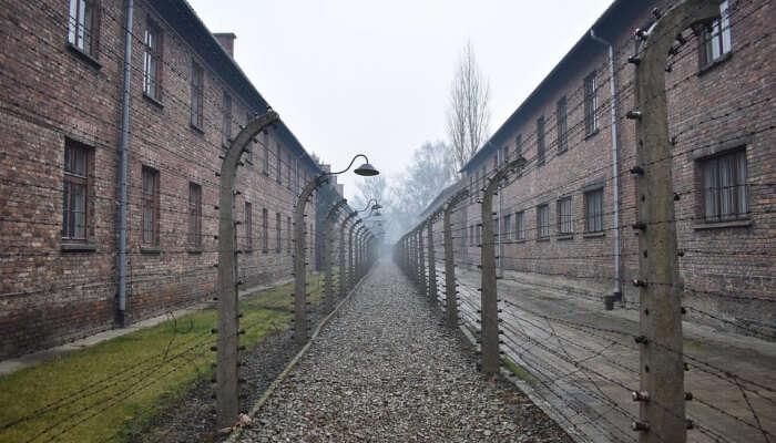 Auschwitz Birkenau Memorial And Museum Tours