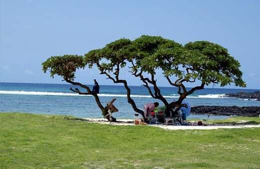 Best Time To Visit La Cambuse Beach