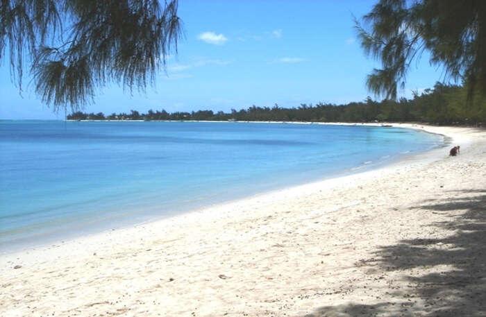 Fabulous Beach view