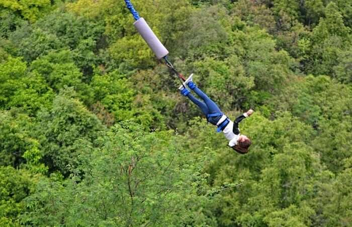 Bungee Mogale