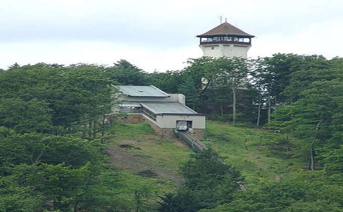 Diana Lookout Tower