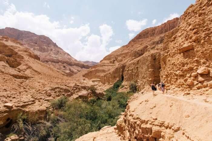 Ein Gedi National Park