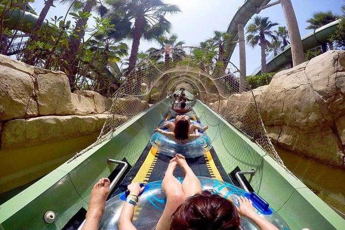 aquatic theme park