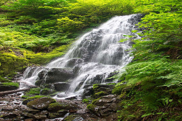 Fairy Falls Trailhead