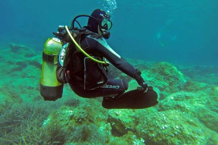 Scuba Diver Water Padi Scuba Diver Underwater Sea