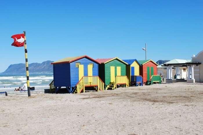 Go Surfing At Muizenberg Beach