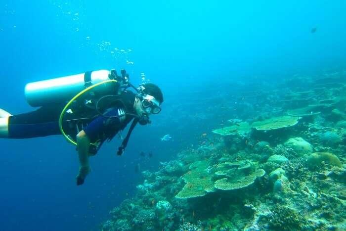 Go-snorkeling