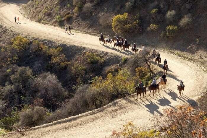 Griffith-Park-Trails
