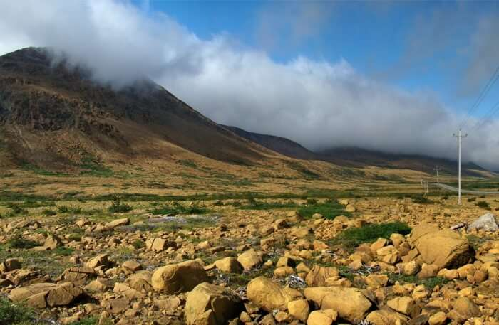 Gros Morne National Park view