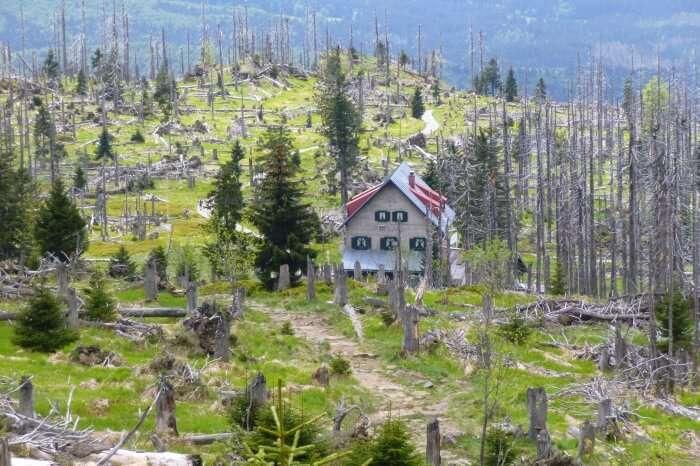 Haus Waldschmidt