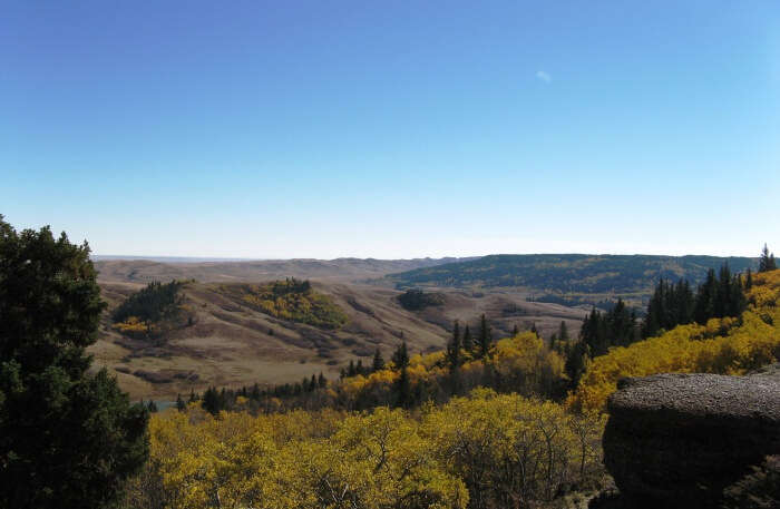 Hike Through The Cypress Hills