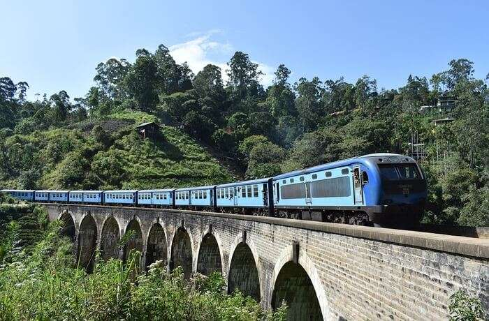How To Reach Udawalawe National Park