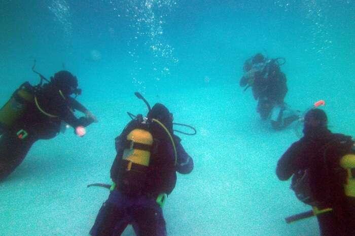 Indigo Divers