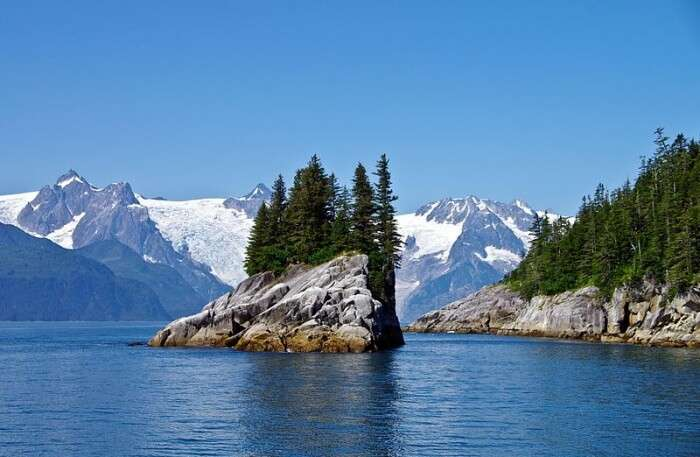 Kenai Fjord National Park View