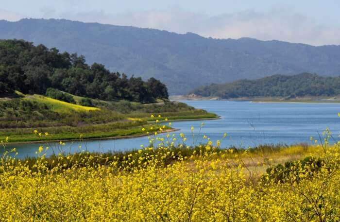 Lake Casitas in Los Angeles