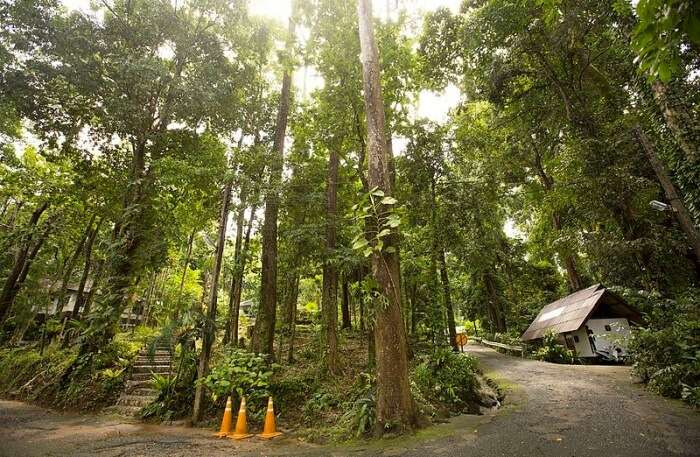 Lam Ru National Park