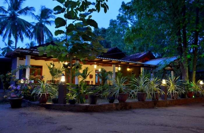 Max Safari Villa