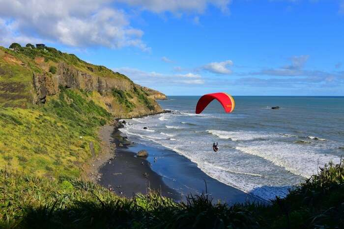 Best of Paragliding in Auckland