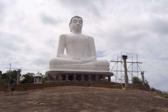Samadhi Meditation Buddha