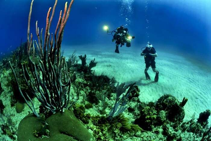 Scuba diving in New Marki beach