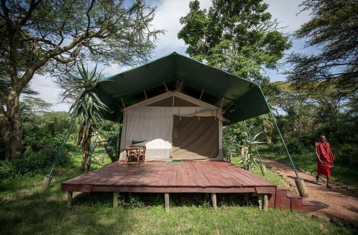 Stay in safari styled camps