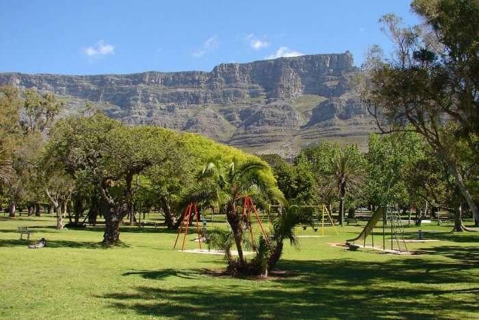 Swing In Your Hammock At De Waal Park