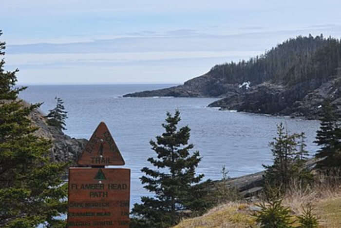 The East Coast Trail View