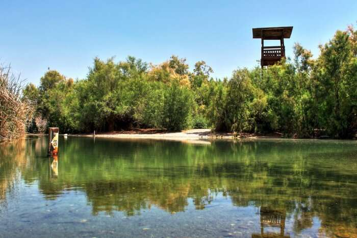 The Nature Reserve