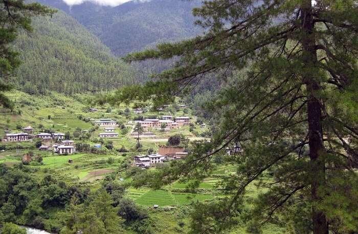 The Temperature Of Bhutan In March