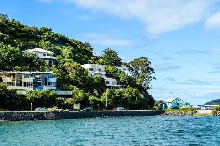 Water Dunedin Surf Ocean Sea Beach New Zealand