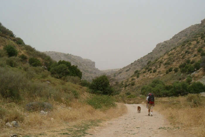 Trekking at Israel National Trail