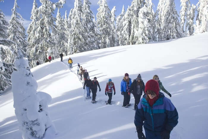 Try snowshoe trekking