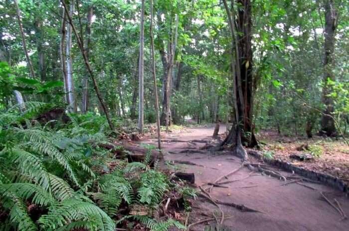 Veuve Nature Reserve