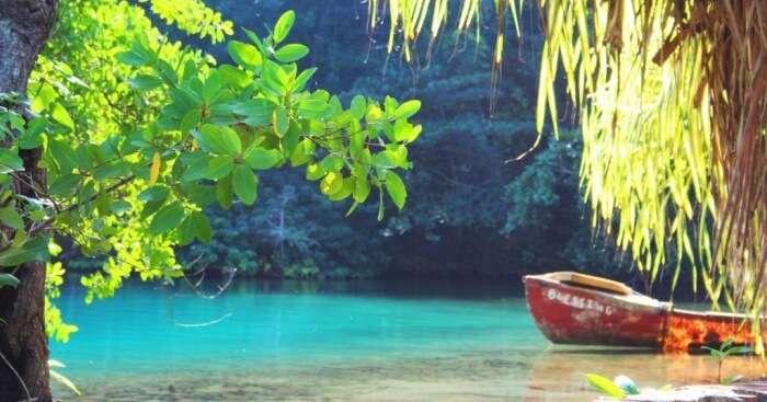 hot springs in jamaica