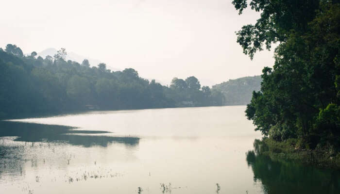 lake spread widely with greenery in the surroundings