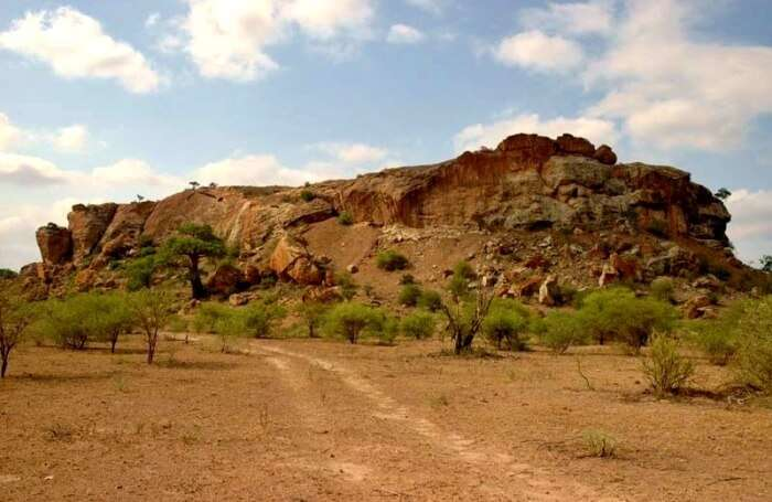 About Mapungubwe National Park