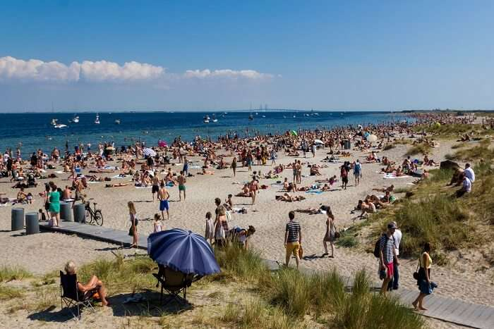 crowd chilling on a beach in Denmark