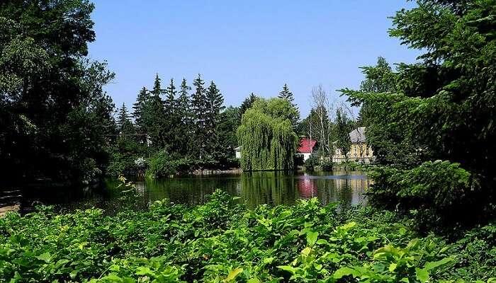 Arboretum Of Zirc