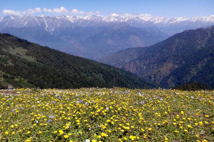 Chandrakhani Pass near Manali