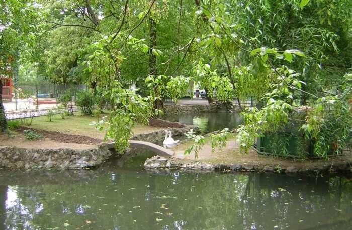 Cismigiu Garden