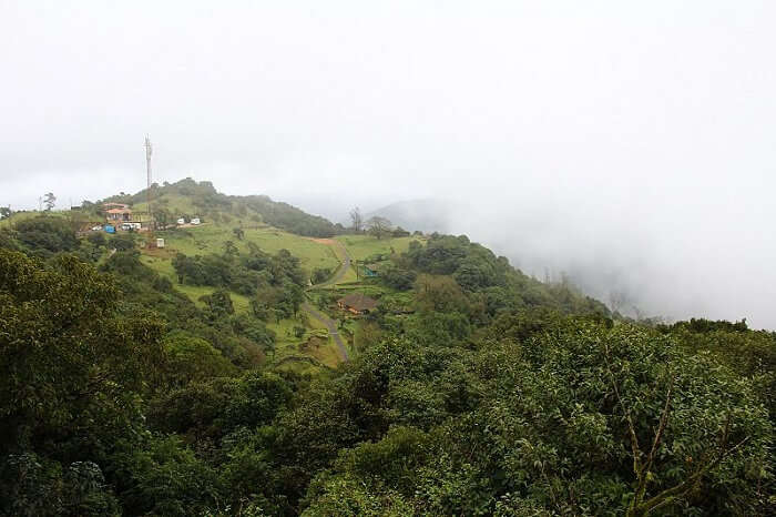 Mist blowing over Coorg